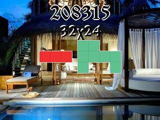 Puzzle polyominoes №208315