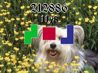 Puzzle polyominoes №212886