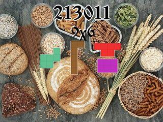 Puzzle polyominoes №213011