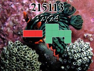 Puzzle polyominoes №215113