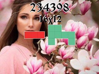 Puzzle polyominoes №234398