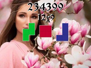 Puzzle polyominoes №234399