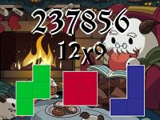 Puzzle polyominoes №237856