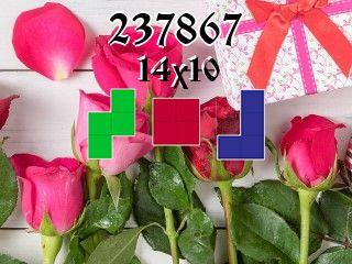 Puzzle polyominoes №237867