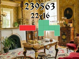 Puzzle polyominoes №239563