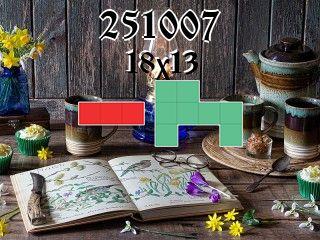 Puzzle polyominoes №251007