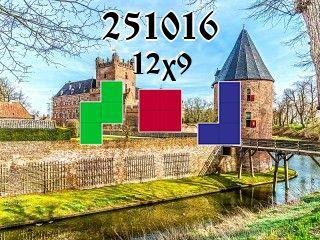 Puzzle polyominoes №251016