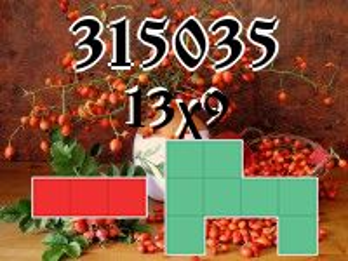 Puzzle polyominoes №315035