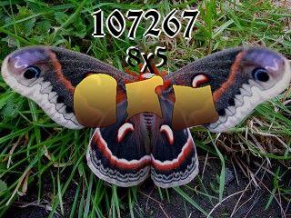 Puzzle №107267
