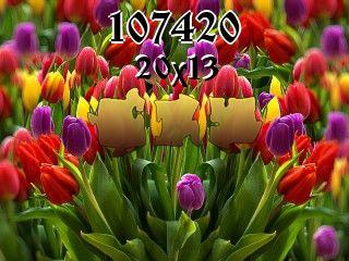 Puzzle №107420