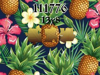 Puzzle №111776