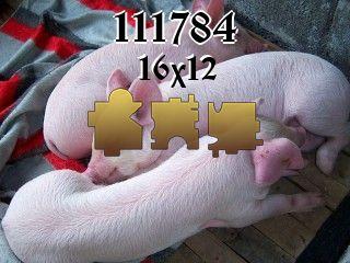 Puzzle №111784