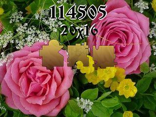 Puzzle №114505