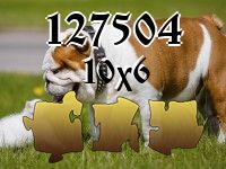 Jigsaw Puzzle №127504