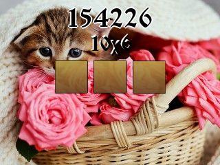 Puzzle №154226