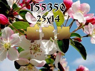 Puzzle №155350