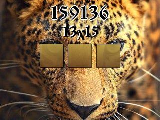 Puzzle №159136