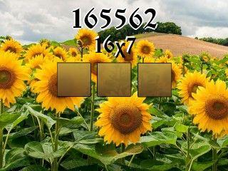 Puzzle №165562