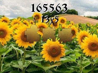 Puzzle №165563