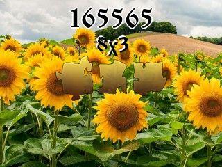 Puzzle №165565