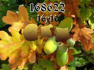 Puzzle №168622