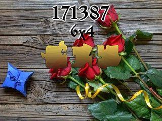 Puzzle №171387