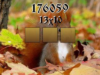 Puzzle №176059