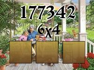 Puzzle №177342