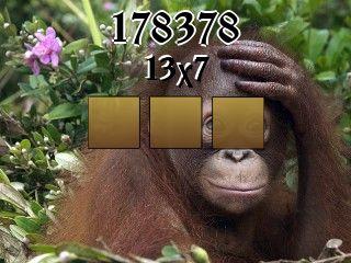 Puzzle №178378