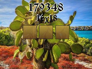 Puzzle №179348