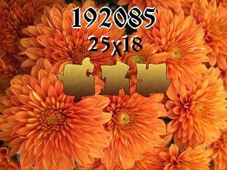 Puzzle №192085
