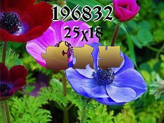 Puzzle №196832