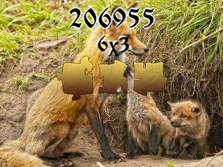 Puzzle №206955