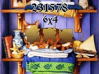 Puzzle №231578