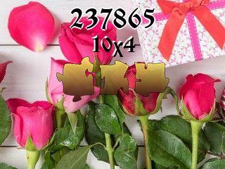 Puzzle №237865
