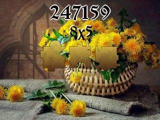 Puzzle №247159