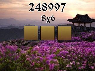 Puzzle №248997