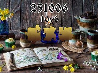 Puzzle №251006