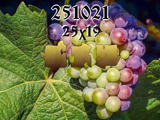 Puzzle №251021