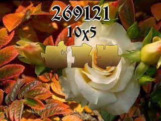 Puzzle №269121