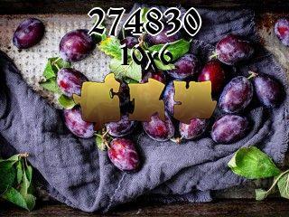 Puzzle №274830