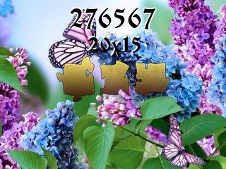 Puzzle №276567
