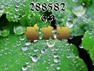 Puzzle №288582