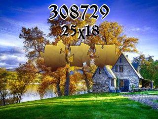 Puzzle №308729