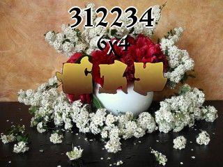 Puzzle №312234