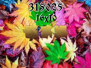 Puzzle №315025