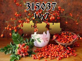 Puzzle №315037