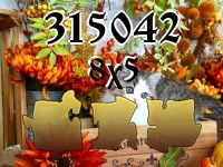 Puzzle №315042