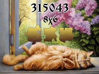 Puzzle №315043