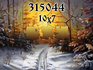 Puzzle №315044